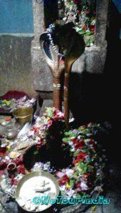 Shiva Idol in the Temple